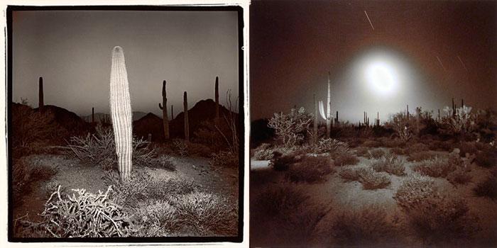 Richard Misrach - Desert Night