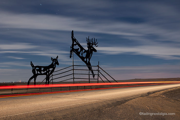EnchantedHighway_DeerCrossing_night